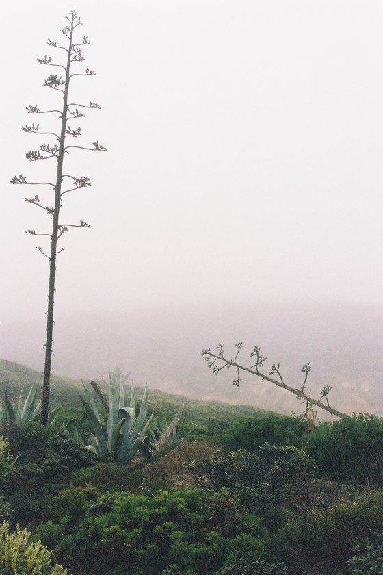 sagres_1 portugal 2006