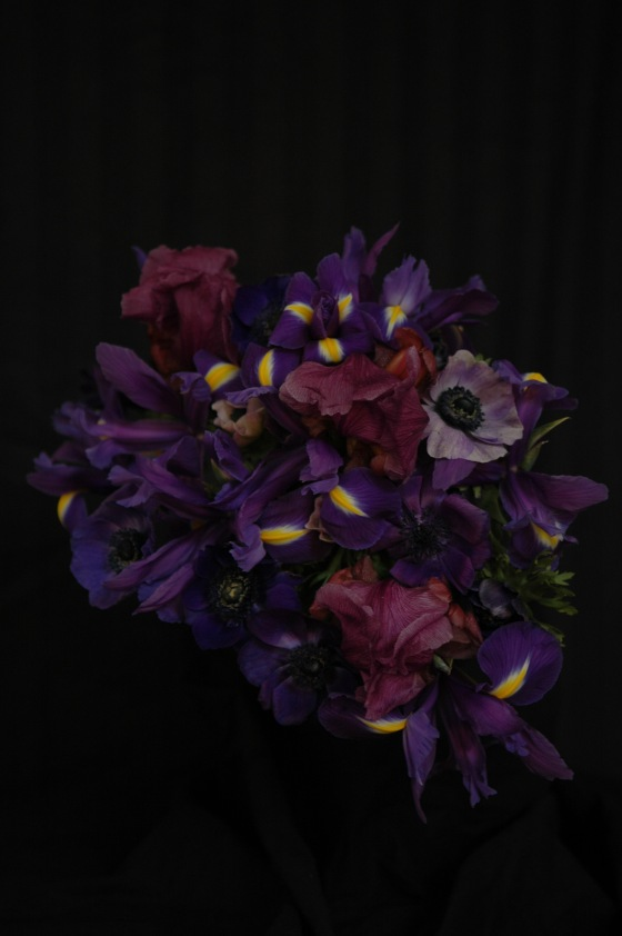 irises & anemones_13 purple